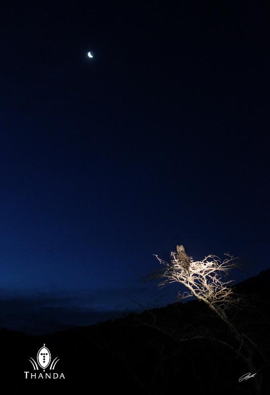 20121217 - CS2_3474 - E 3 - SIG