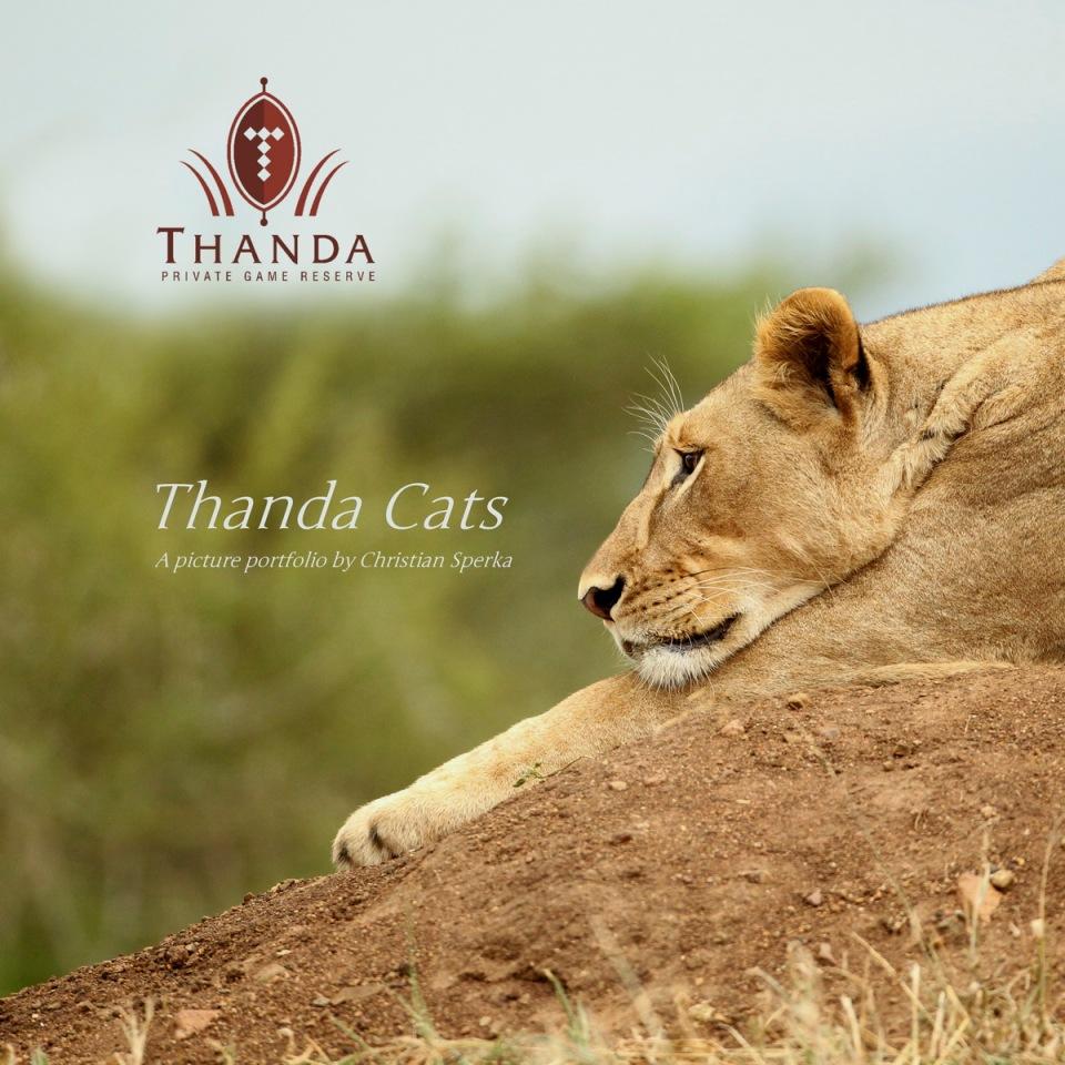 THANDA CATS