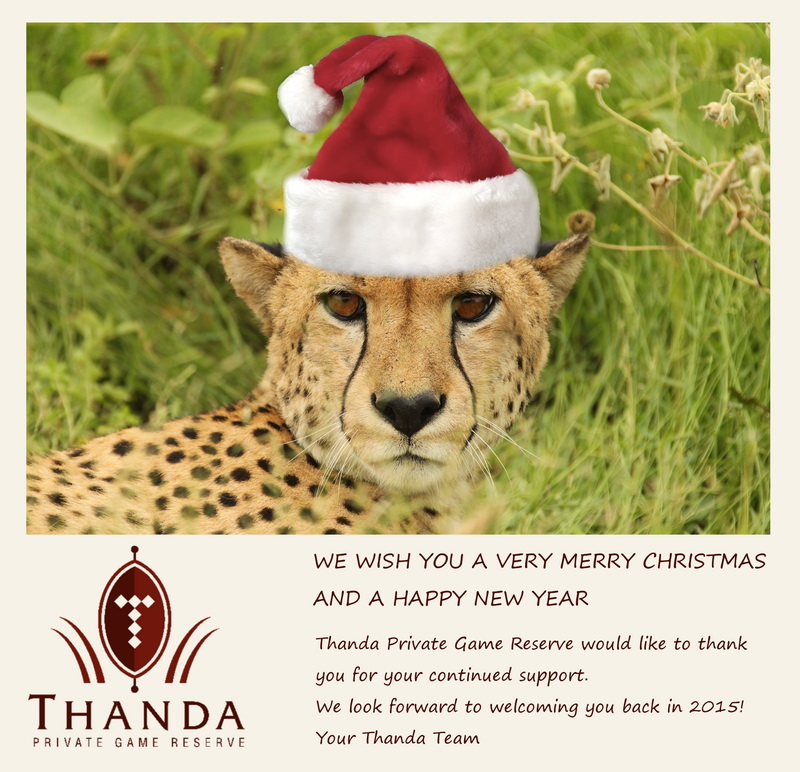 Christmas 2014 Thanda
