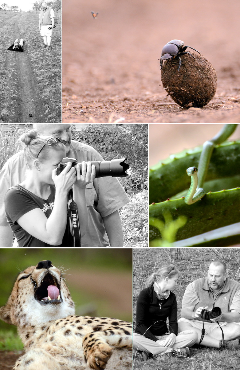 Photo Lesson