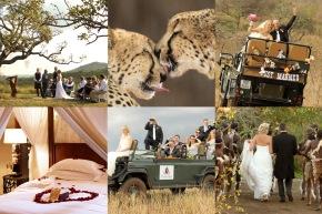 20150225 - Wedding Collage 1