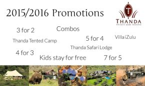 2015 2016 Promotions